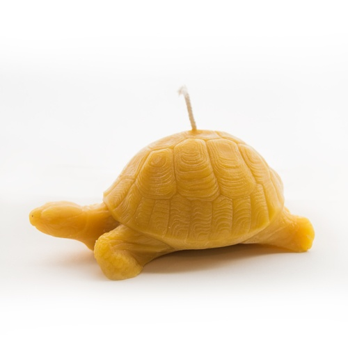 Turtle Beeswax Candle