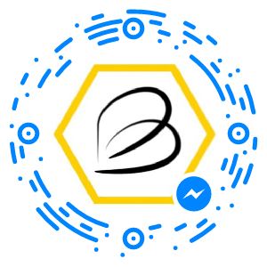 Facebook Messenger Code -- 300
