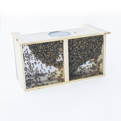 Honey Bee Packages | Bear Country Bees