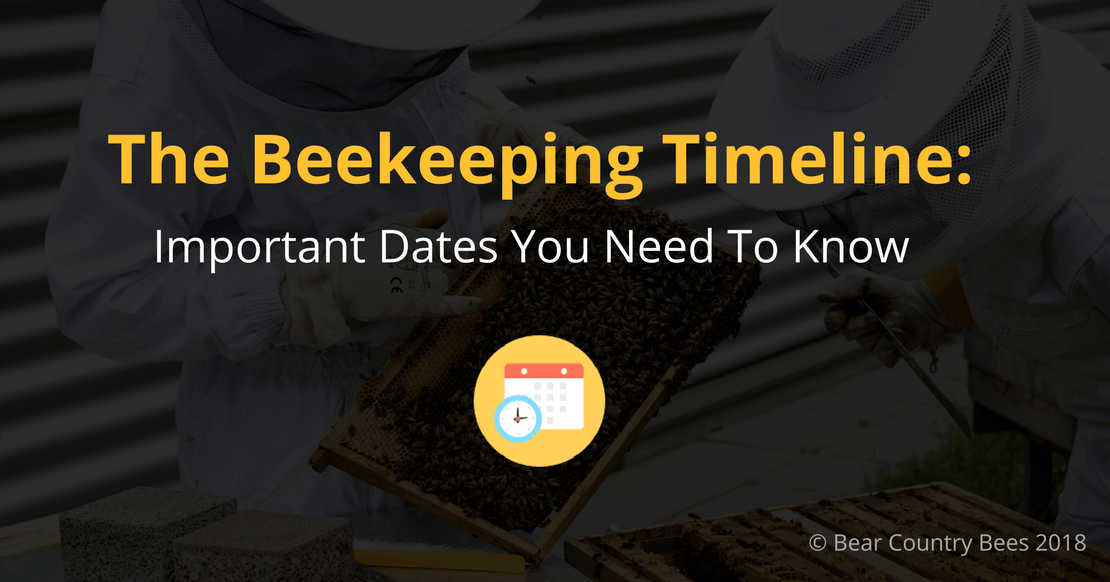 Beekeeping Timeline - Featured